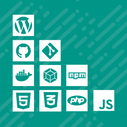 Agora WordPress Design and Development