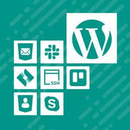 Agora WordPress Maintainance Plans
