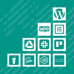 Agora WordPress Ongoing Retainer